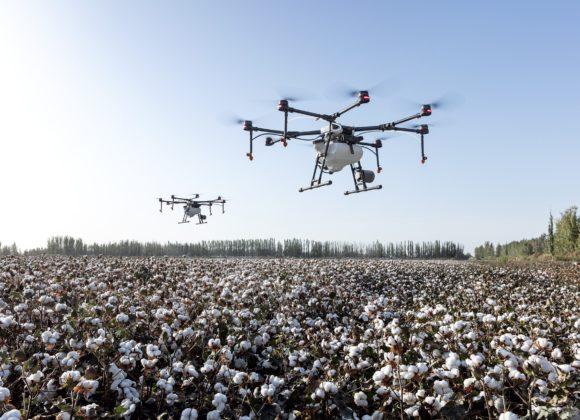 Национальная платформа цифрового сельского хозяйства